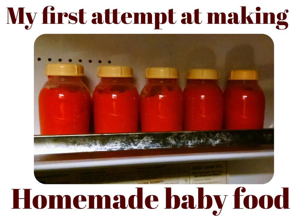 Making Homemade Baby Foods