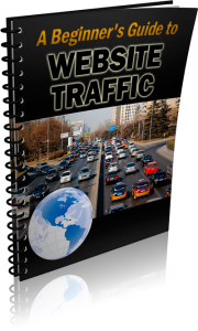Beginner's Guide to Website Traffic