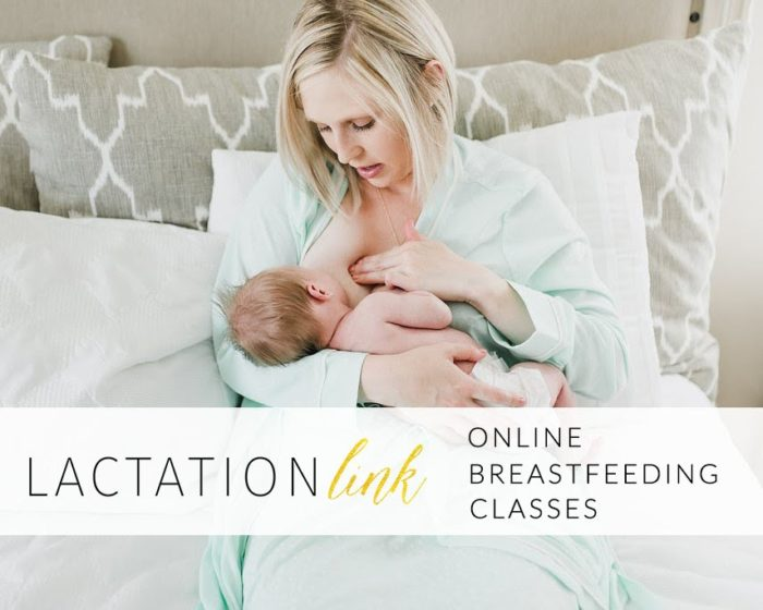 Lactation Link Breastfeeding Support Courses