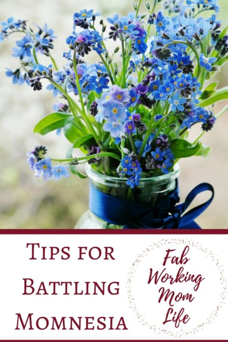 Tips for Battling Momnesia, or Mommy Brain. How to overcome forgetfulness and stay on top of your tasks and your working mom schedule. Fab Working Mom Life #motherhood #momlife #workingmom #mombrain