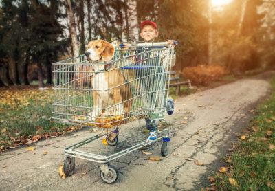 Getting Children Their First Pet
