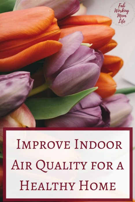 Ways to Improve Indoor Air Quality for a Healthy Home