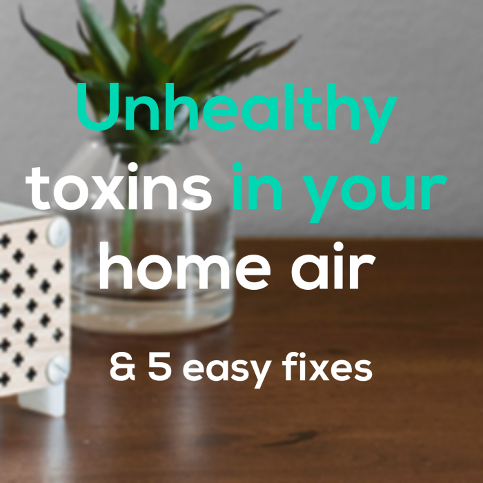 unhealthy toxins in your home and 5 easy fixes