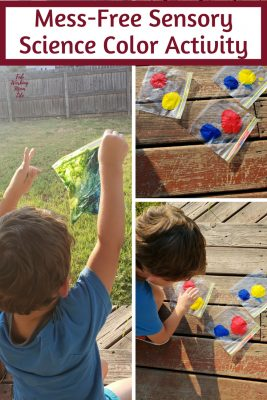 Mess-Free Sensory Science Color Activity