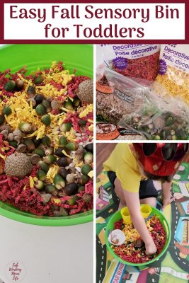 Easy Fall Sensory Bin for Toddlers | Fab Working Mom Life #toddlers #parenting #toddleractivity #sensory #sensorybin