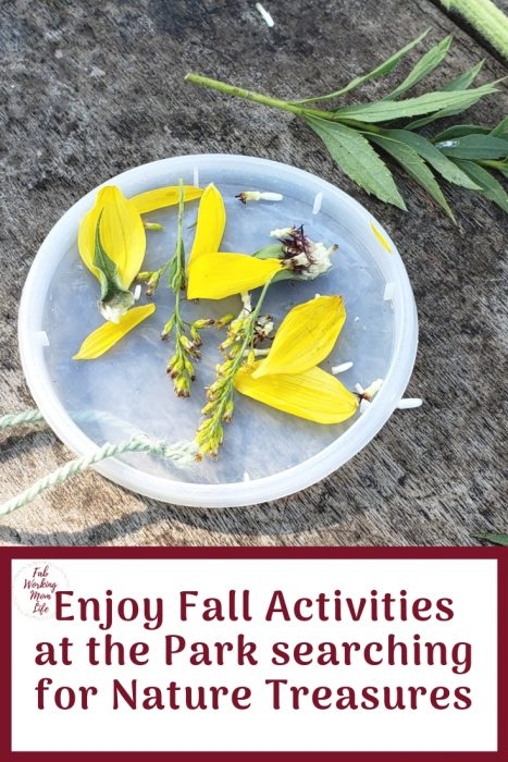 Enjoy Fall Activities at the Park searching for Nature Treasures   Fab Working Mom Life