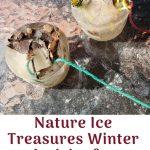 Nature Ice Treasures Winter Activity for Preschoolers | Fab Working Mom Life #kidsactivities #winter #naturetreasures #preschoolers #kidscrafts