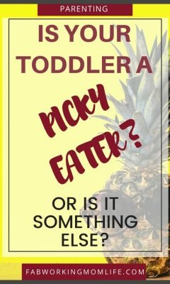 is your toddler a picky eater or is it something else