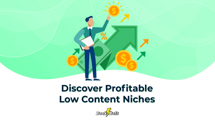 discoveer-low-profitable-low-content-niches