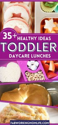healthy ideas toddler daycare lunches